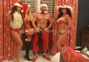 sexy santa party